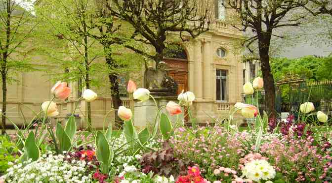Flowers in Bordeaux