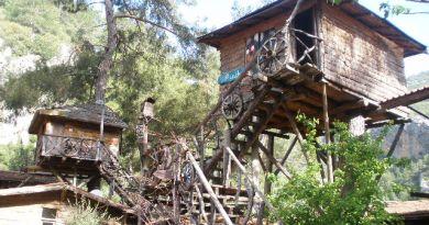 Treehouses, Olympos Turkey