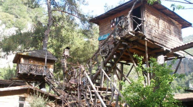 Treehouses, Olympos Turkey