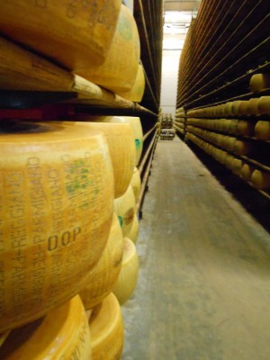 Modena Cheese