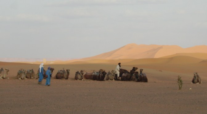 sahara caravan into Algeria