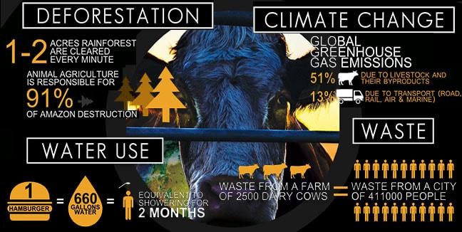 Cowspiracy facts - Ma liste de ressources sur le végétalisme