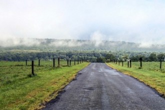 Posted by Mt. Nittany Vineyard & Winery | @mtnittanywinery