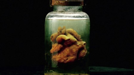 the-strain-heart