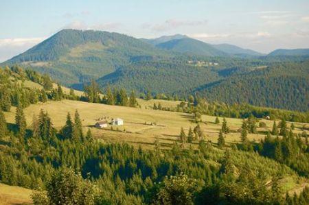 transylvania-wide