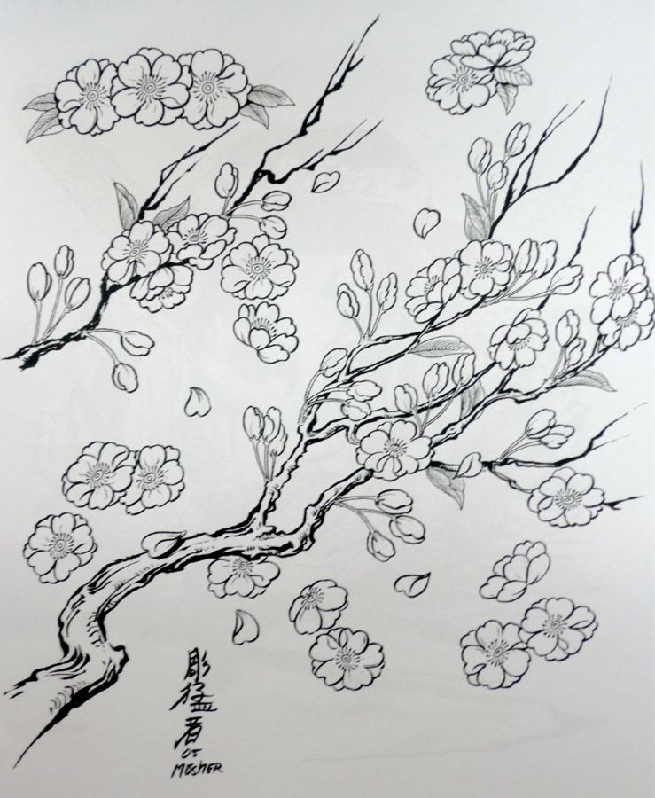 cherry blossoms coloring pages