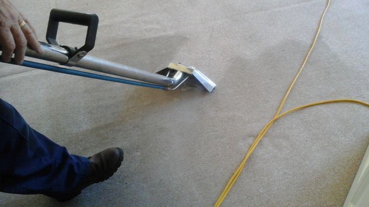 Who Is The Best Carpet Cleaning Company In My Local Area? -