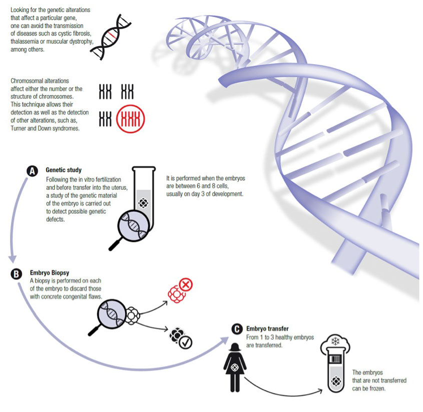 Preimplantation Genetic Diagnosis (PGD) - Virginia Center for