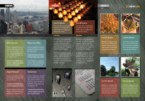 Indesign A4 tri-fold brochure - trifold indesign template