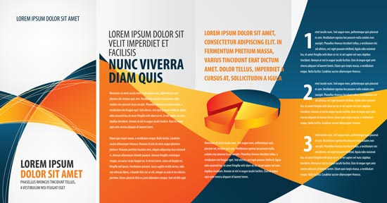 Tri fold business brochure vectors - tri fold business brochure