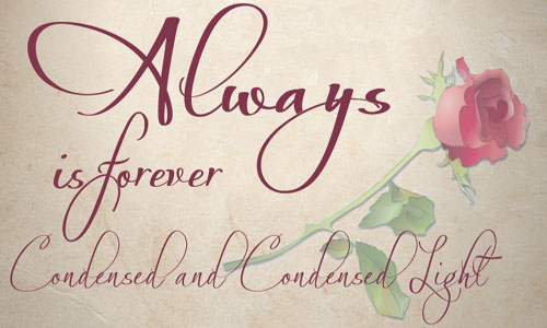 Top 20 Most Beautiful Calligraphy Fonts - Illustrator Tutorials  Tips