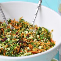 Brussels Sprouts, Kale, and Carrot Slaw