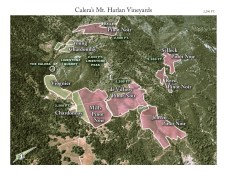 The Calera vineyards