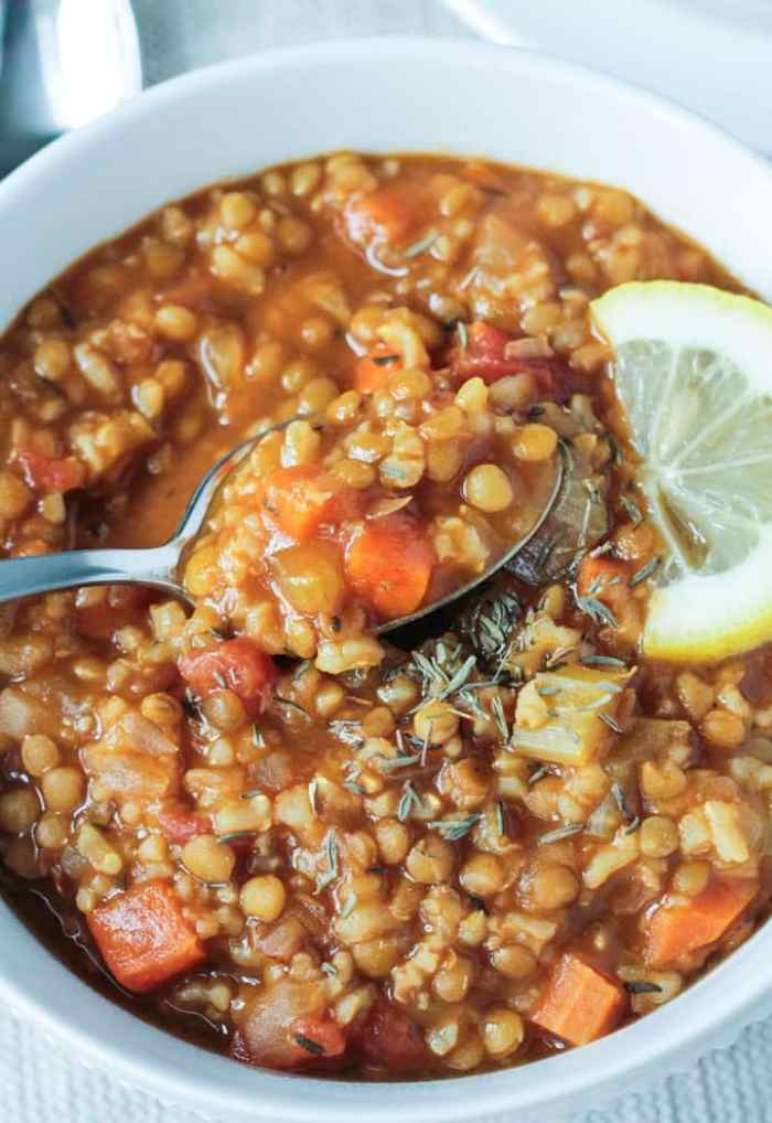 Slow Cooker Red Lentil Stew with Chickpeas and Orzo ...