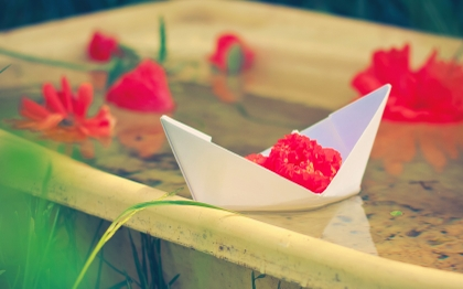 Super Cars Wallpapers Free Download Water Flowers Papercraft Paper Boat Red Flowers Blurred