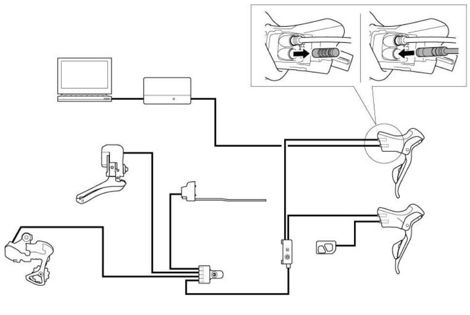 d2 schema cablage