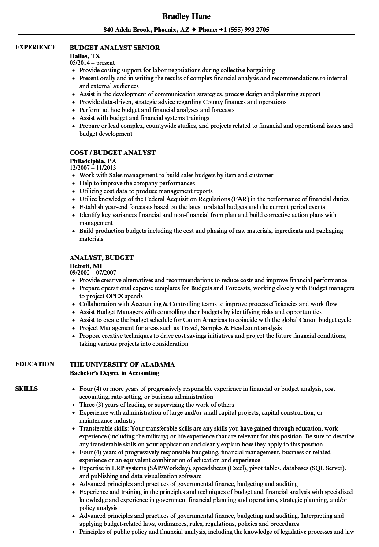 budgeting resume example