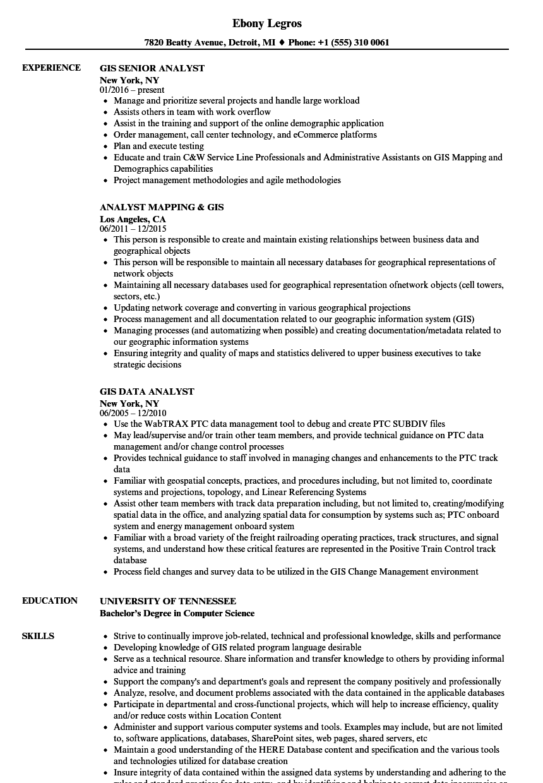 sample resume for gis manager