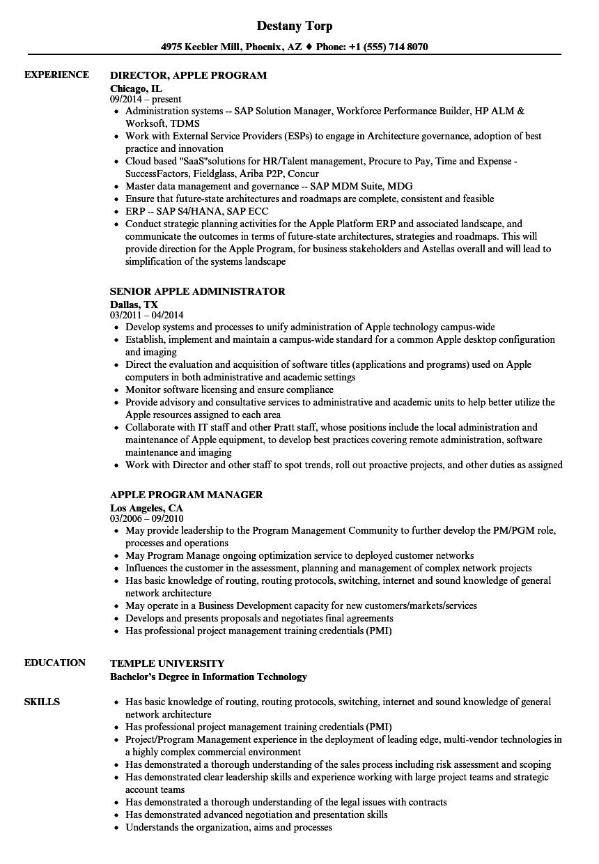 sample resume for apple job