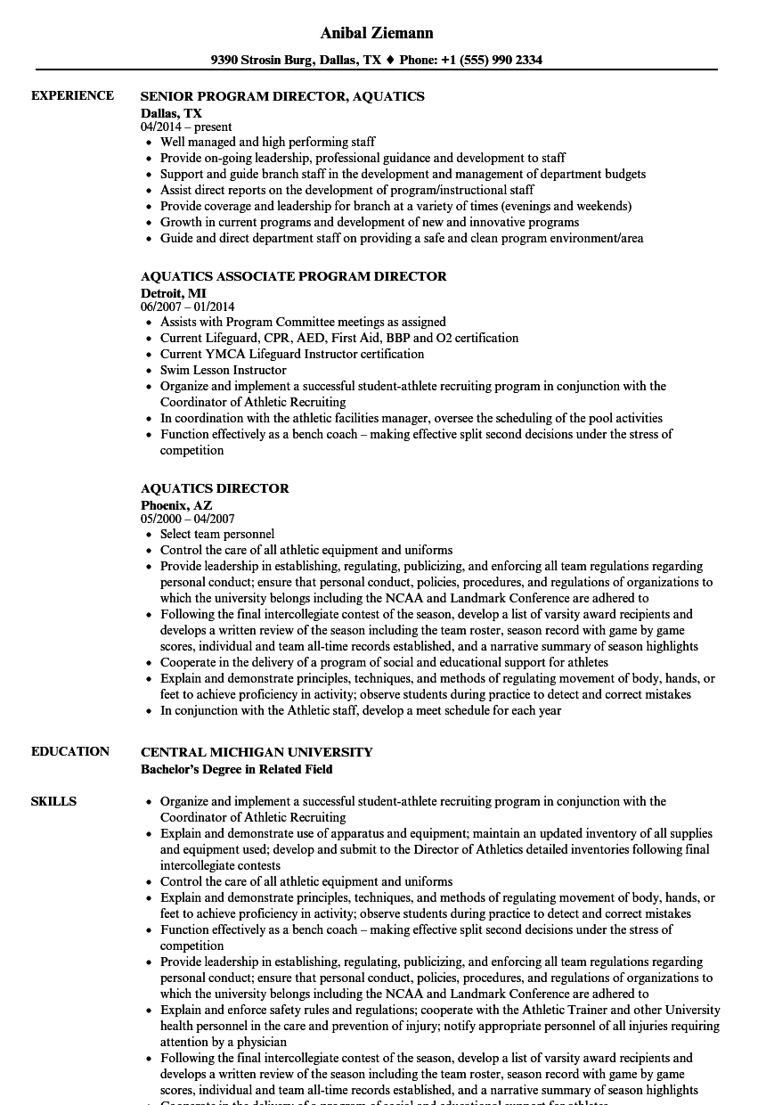director sample resume