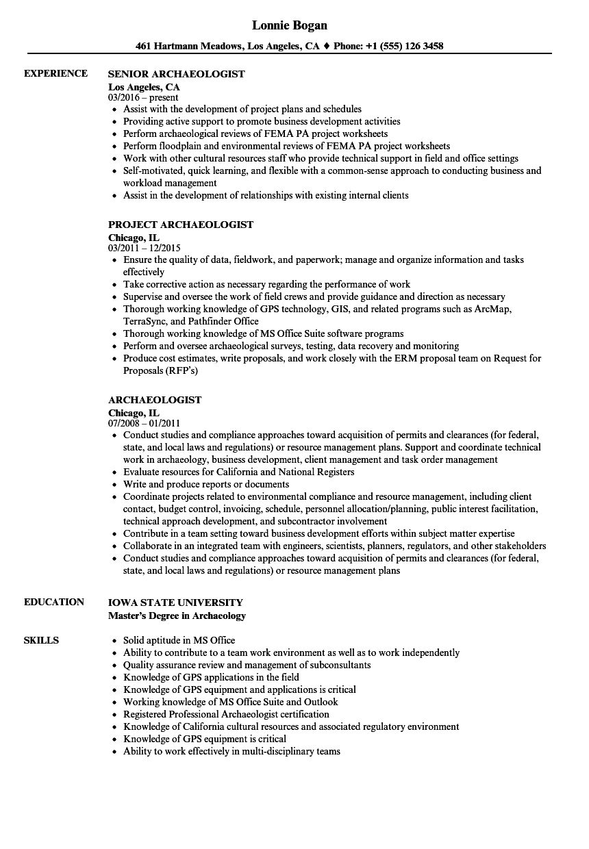 sample resume with analytical skills