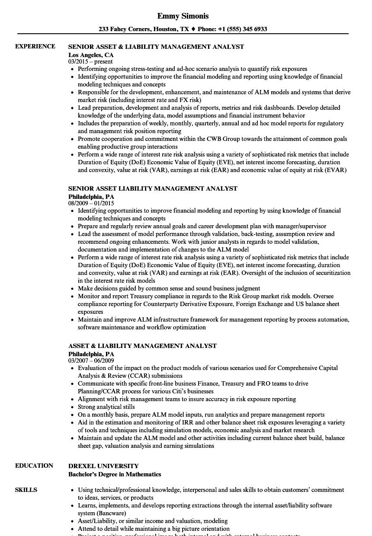 it asset management resume samples