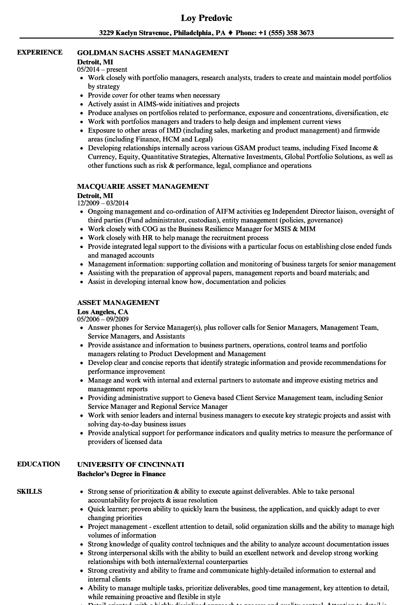 it asset management resume example