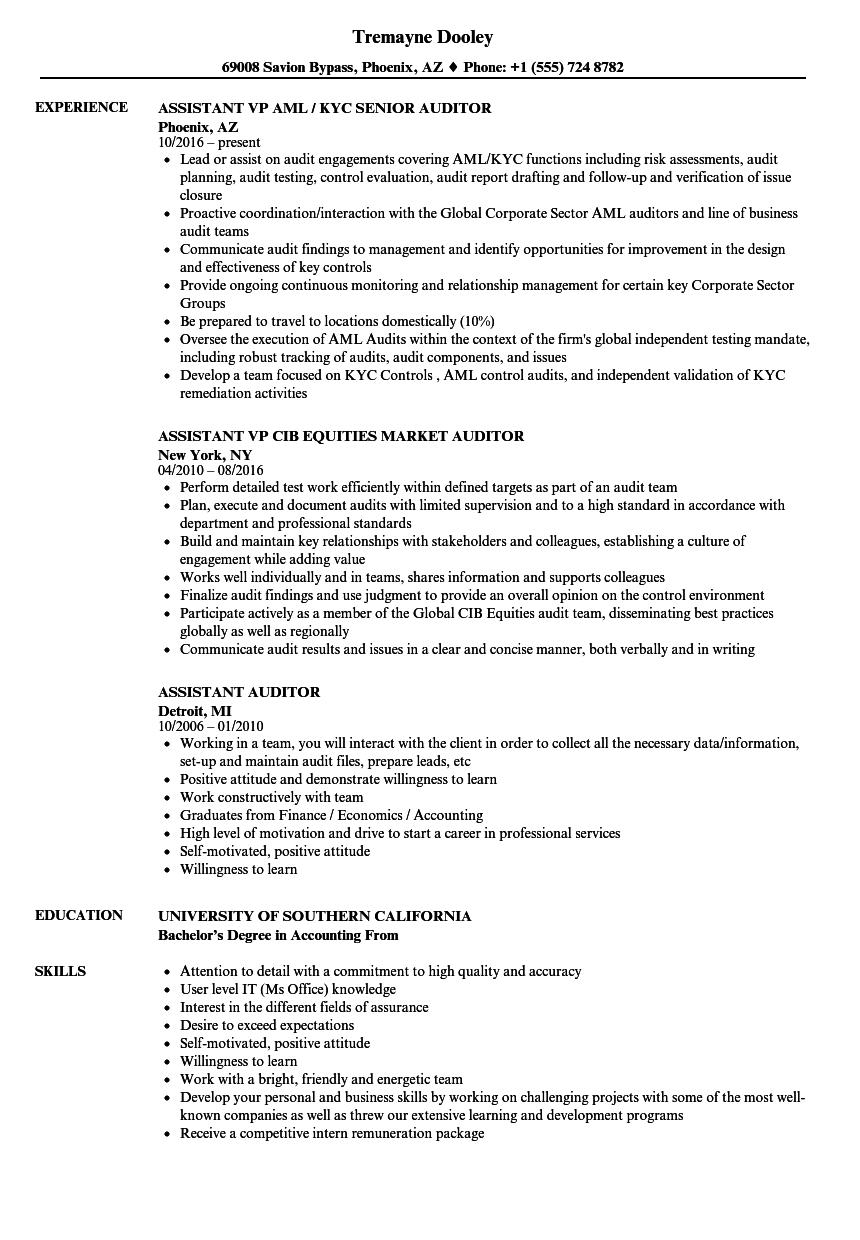 assistant treasurer resume sample