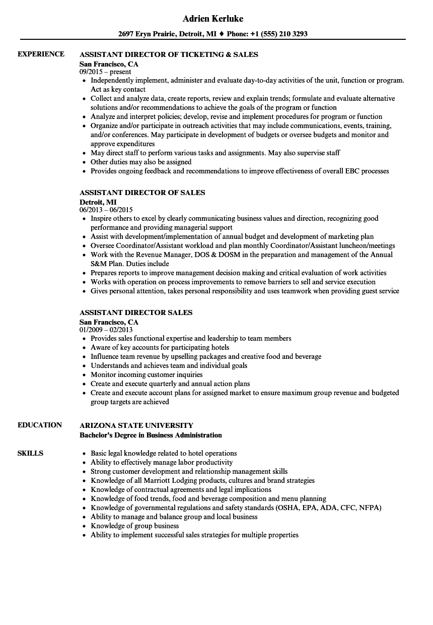 sales team manager resume examples