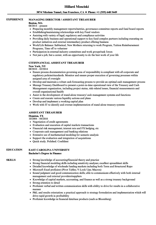sample resume of treasury assistant