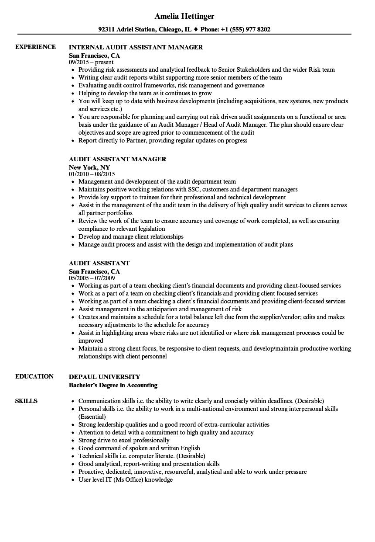audit assistant resume sample