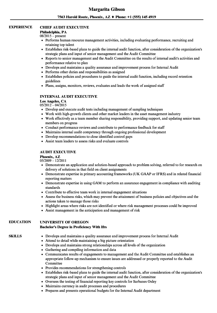 sample executive cv