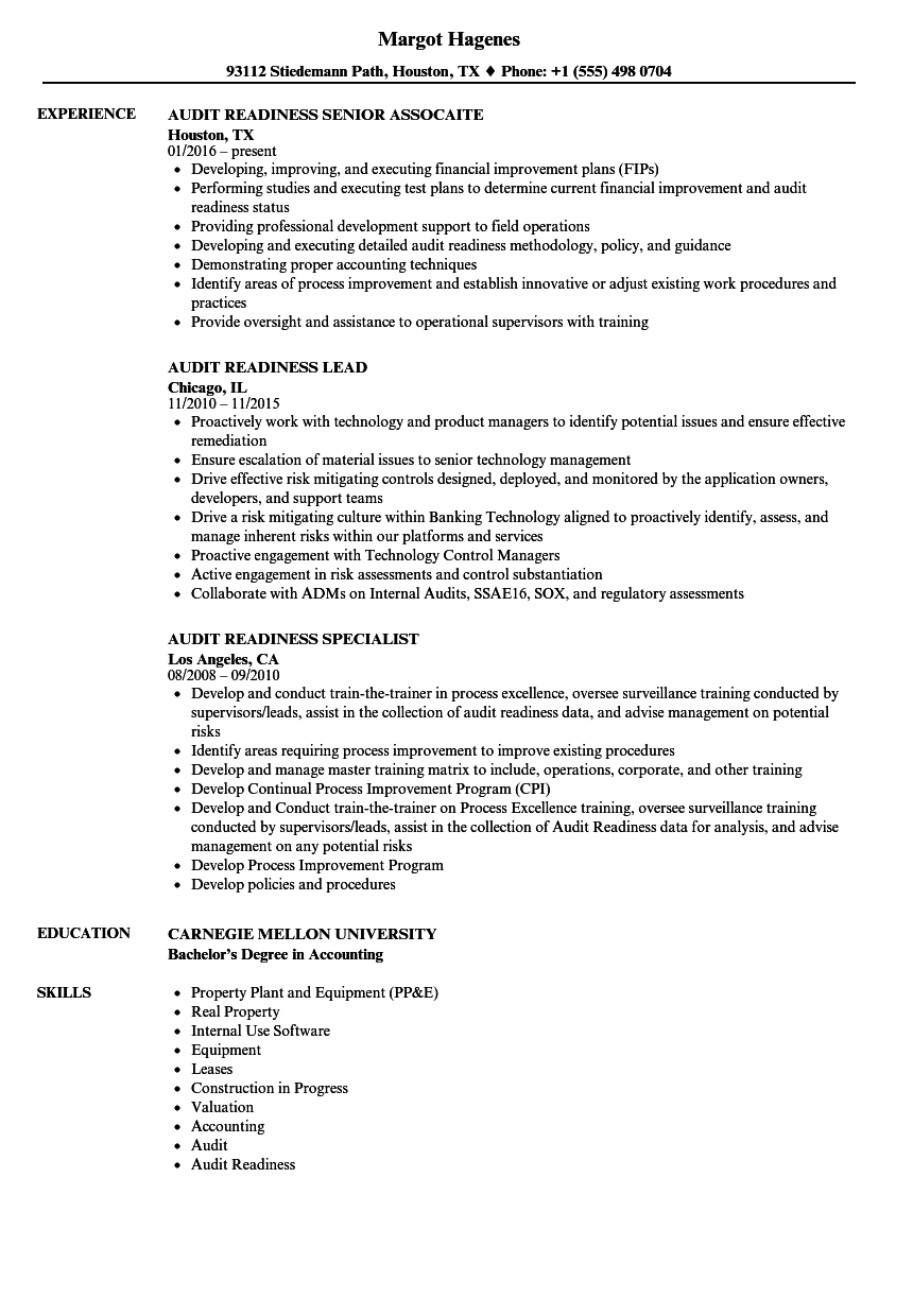 it audit analyst resume examples