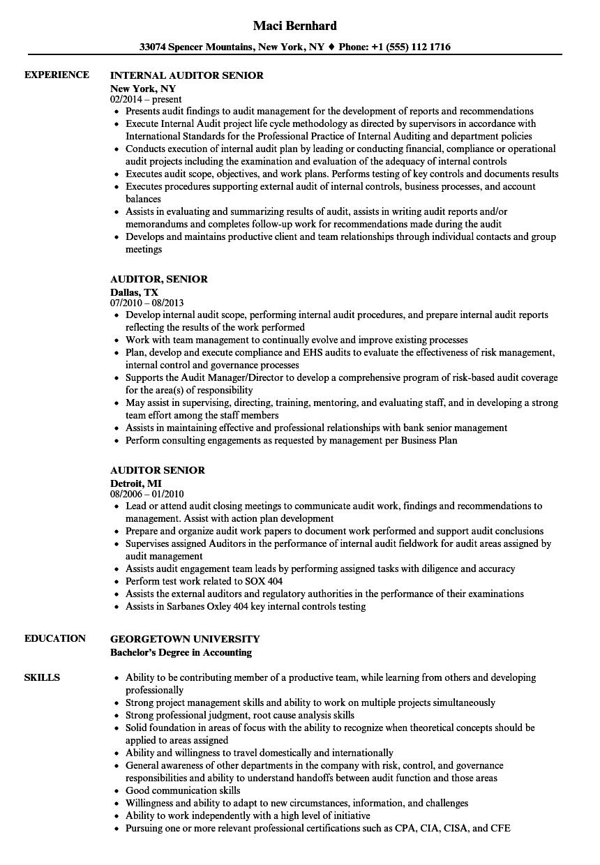 senior auditor resume template