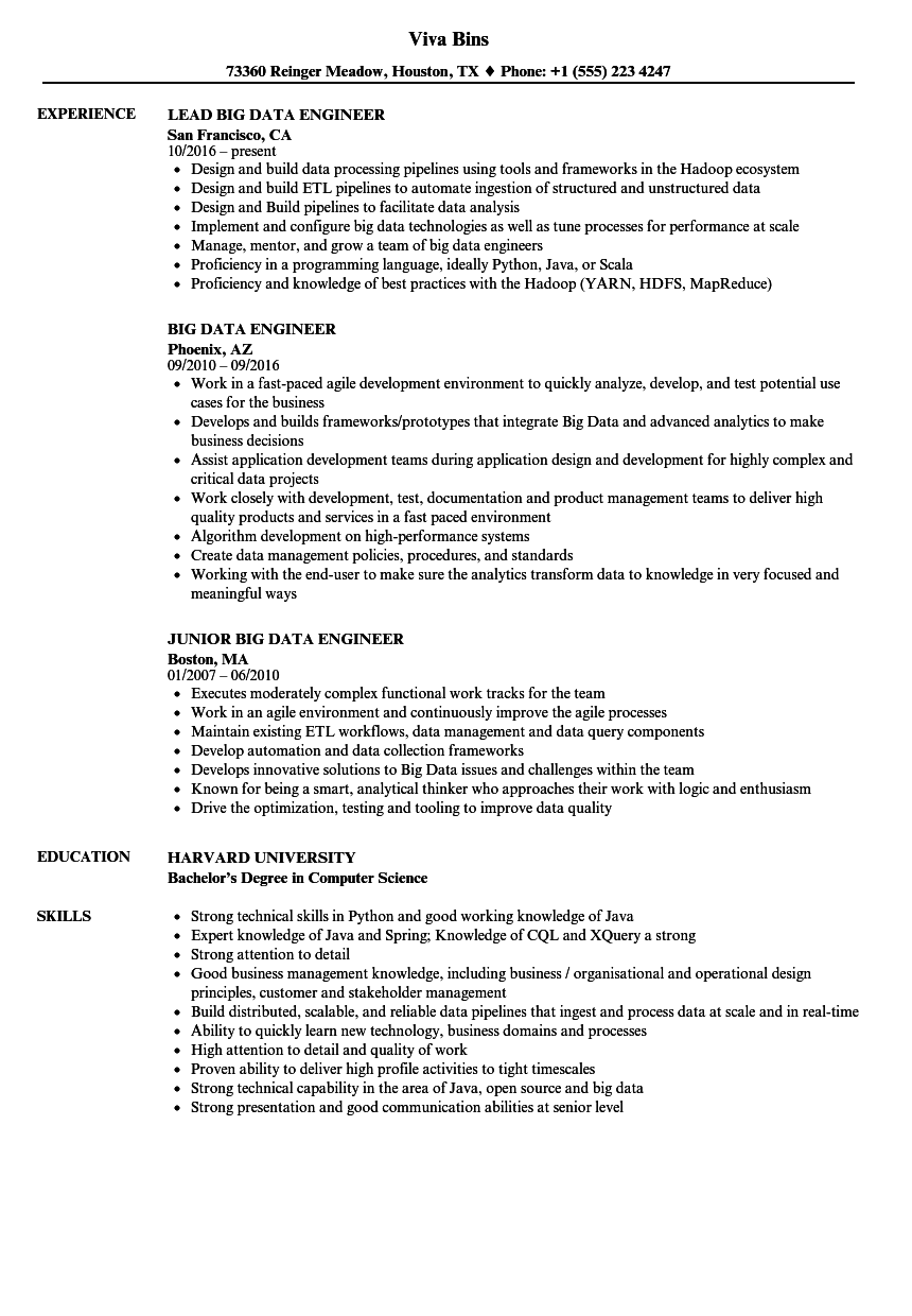 big data engineer cv example