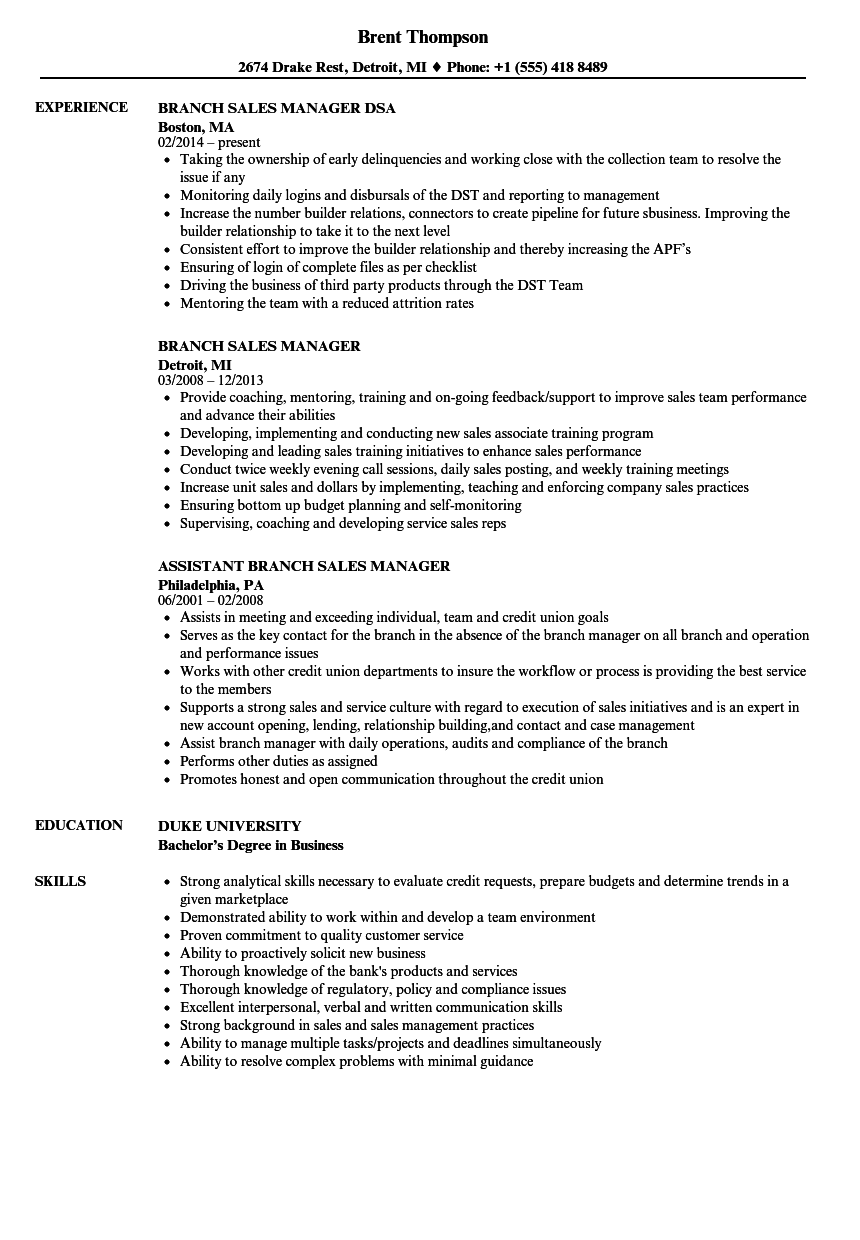 resume format in word for accounts manager