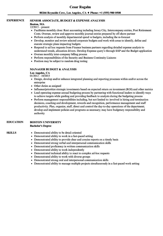 sample budget analyst resume