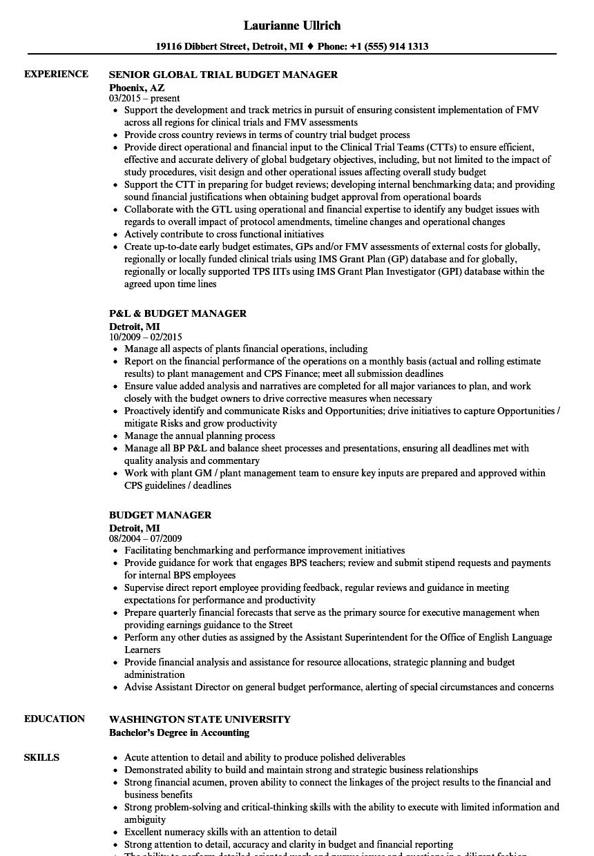 cv budget