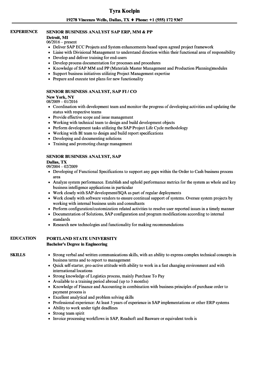 erp business analyst resume examples