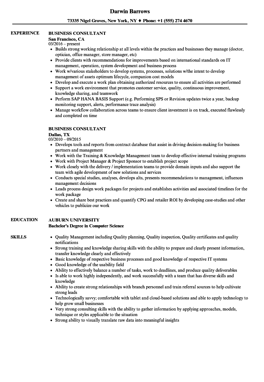 resume samples for business consultants