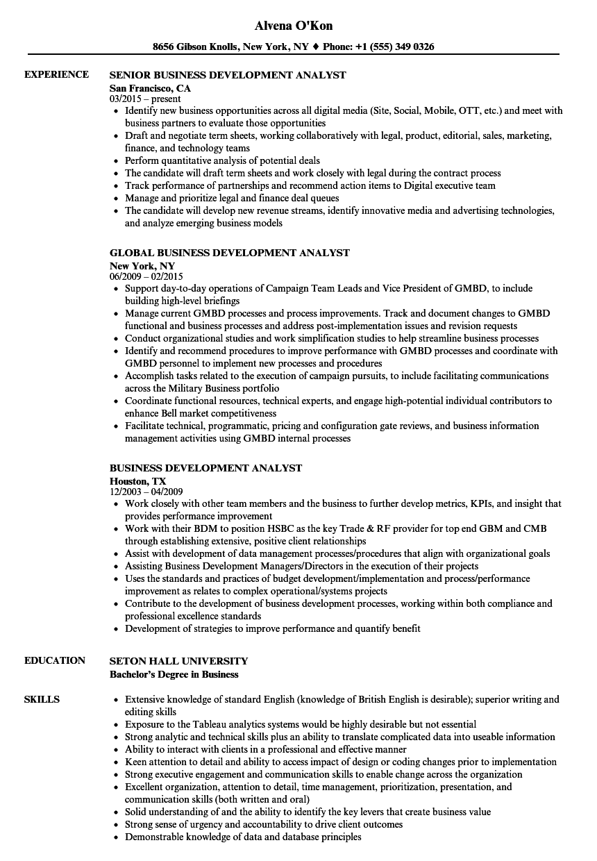 business development it resume sample
