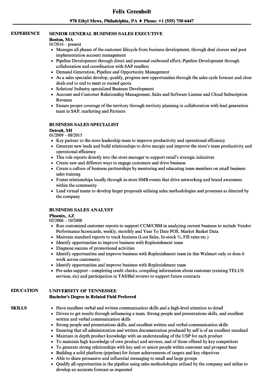 b2b resume examples