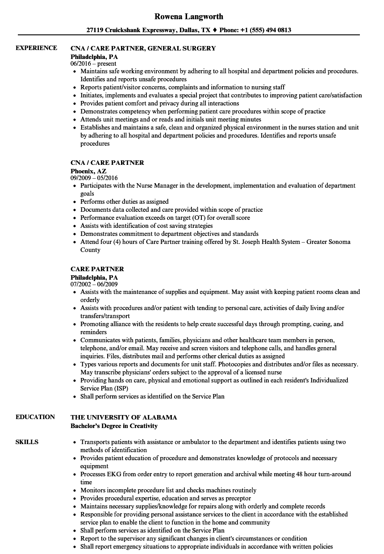 target hardlines partner resume sample