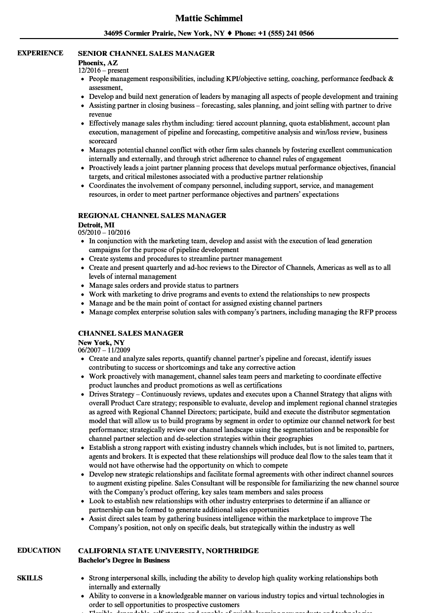 channel sales manager resume examples
