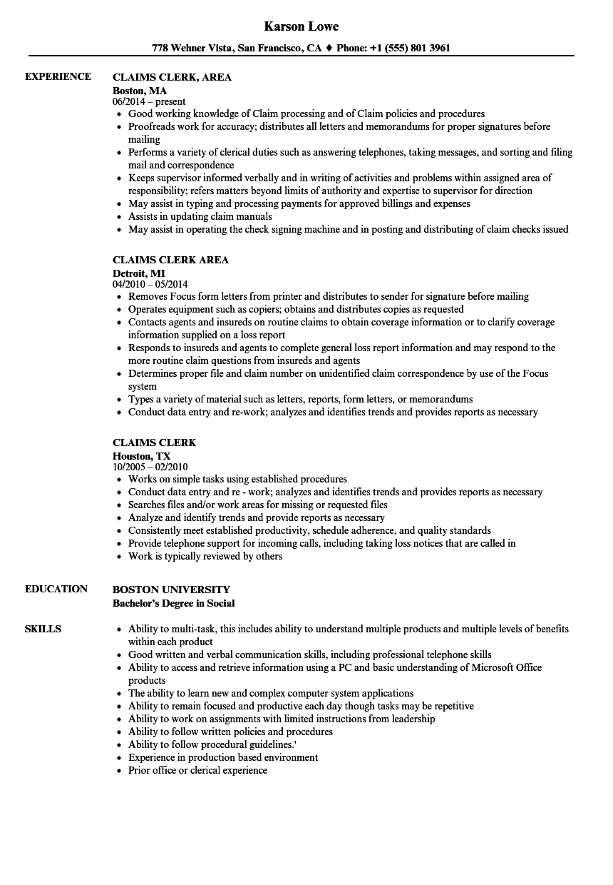 resume examples records management