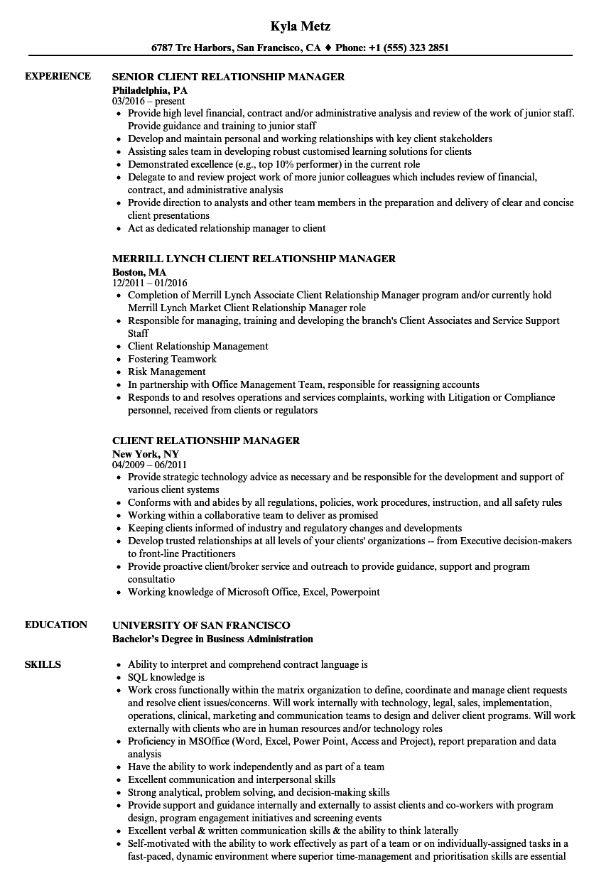it business relationship manager resume sample