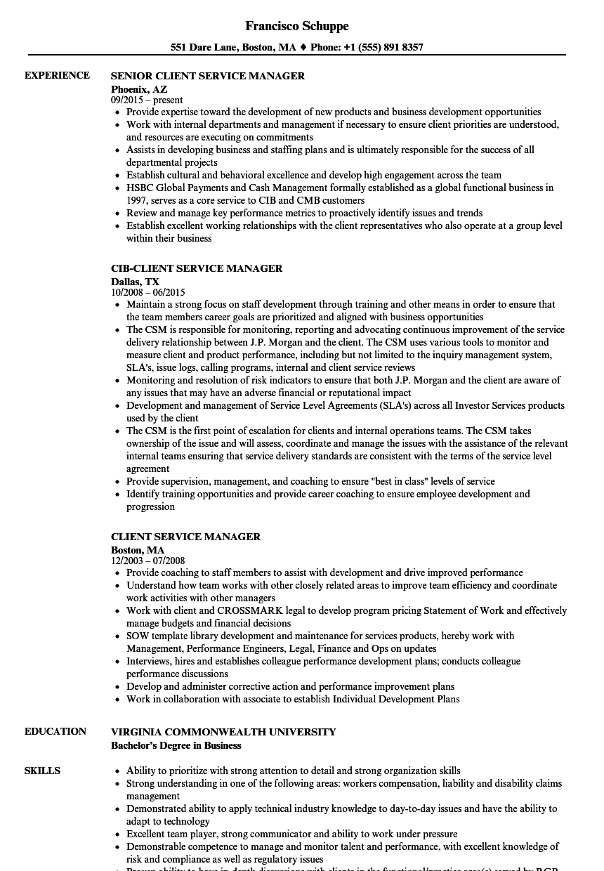 client servicing resume example