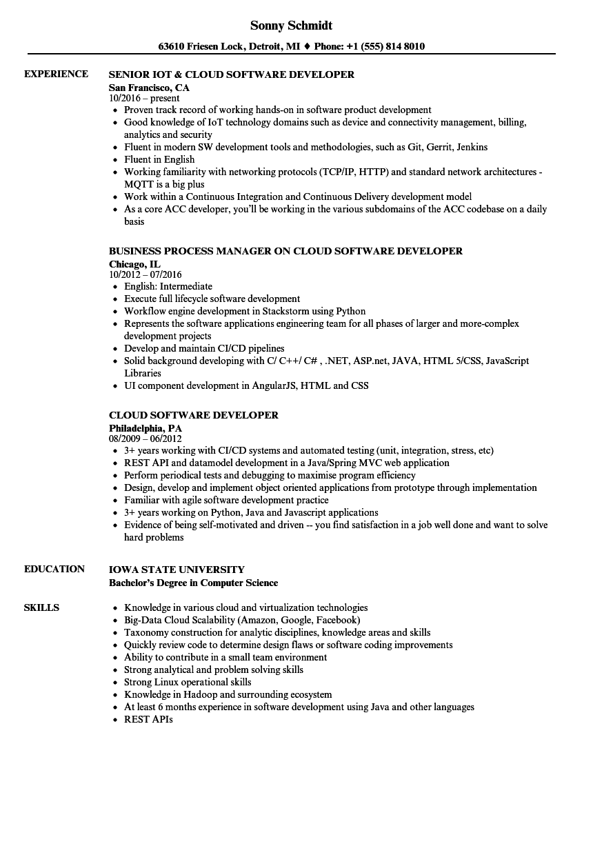 it software resume sample
