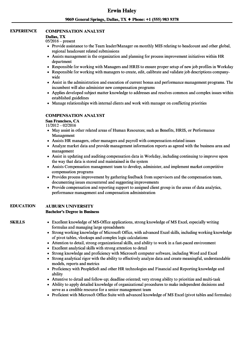 ms office suite skills cv
