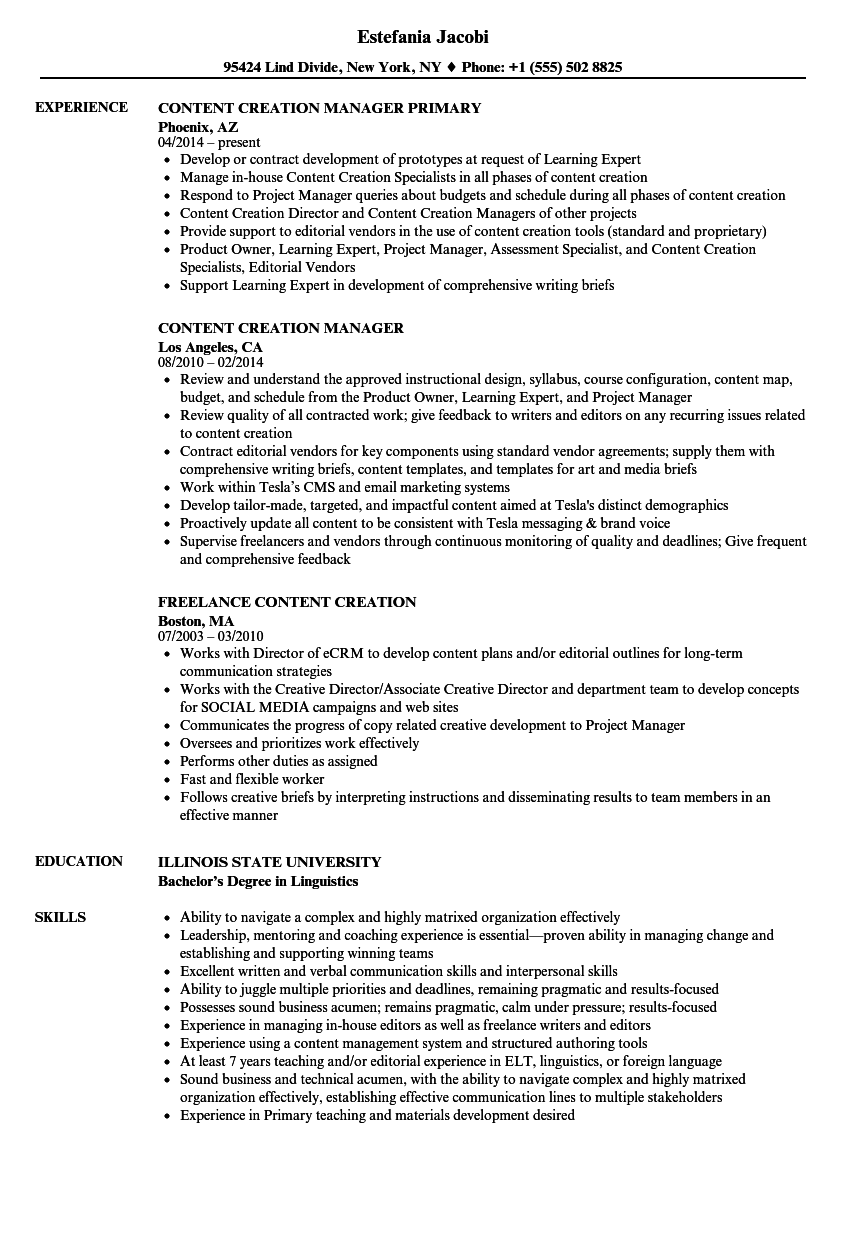 resume examples for it support
